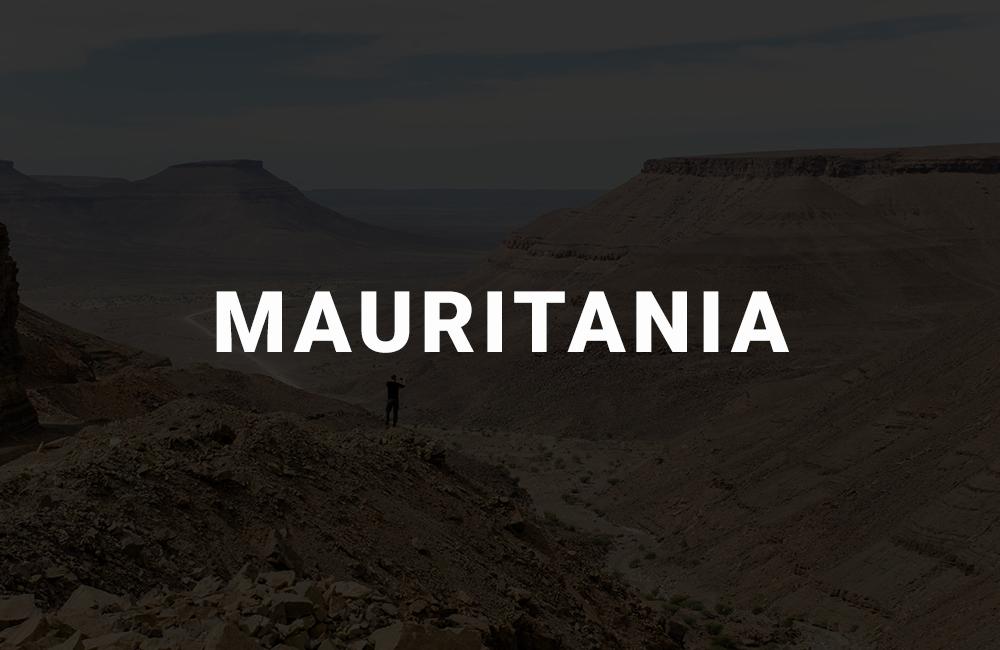 app development company in mauritania