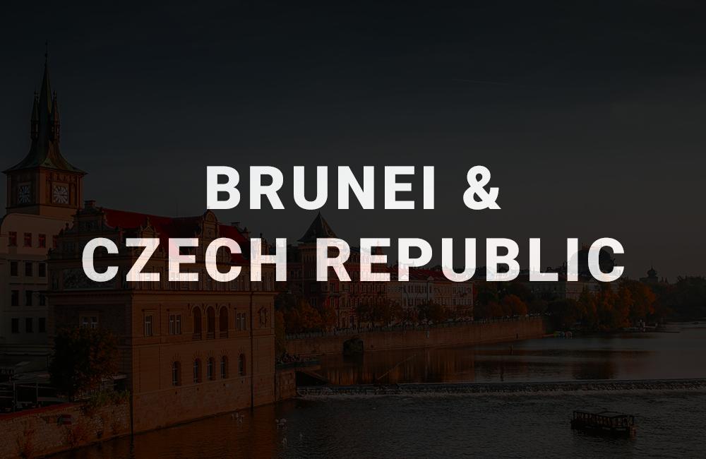 app development company in brunei