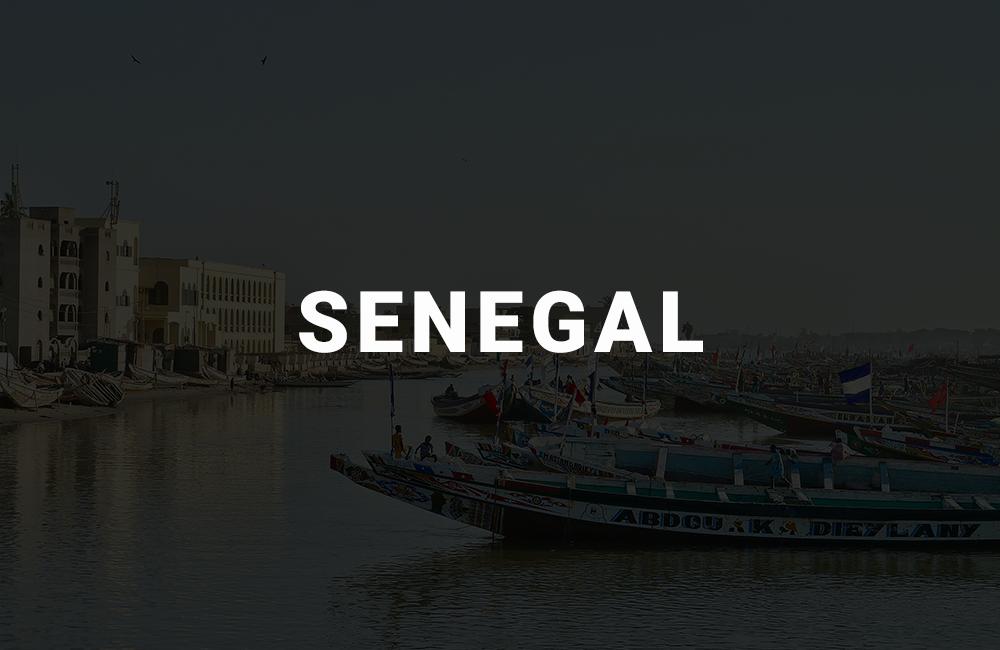 app development company in senegal