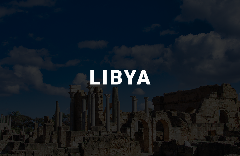 app development company in libya