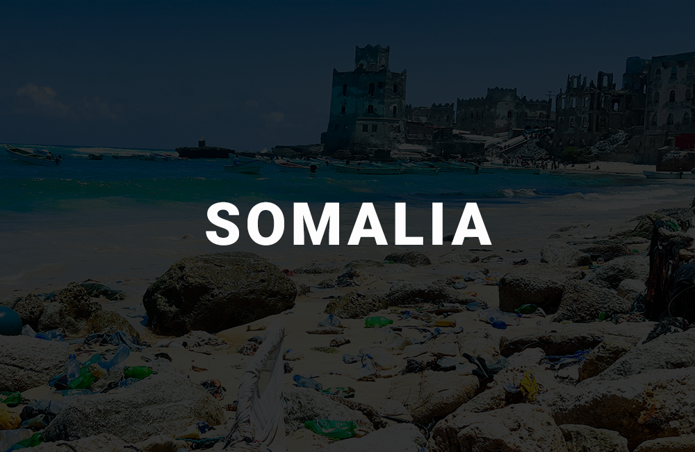 app development company in somalia