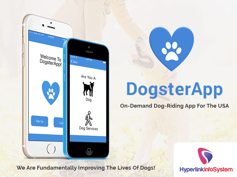 dogster app on demand dog riding app for the usa